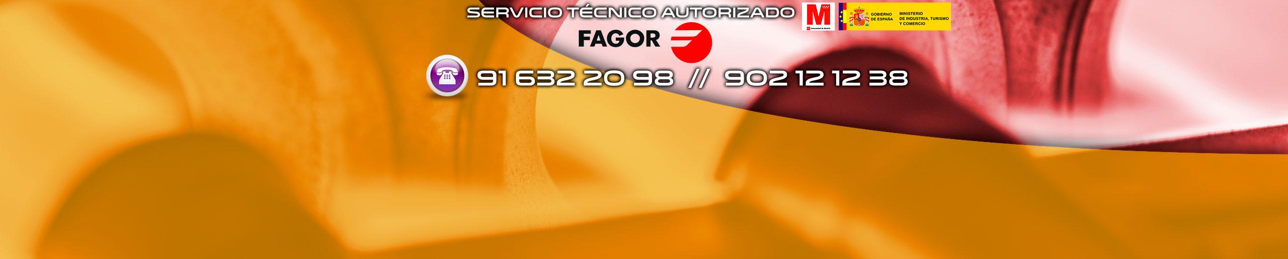 Servicio t cnico calderas fagor en parla t 91 632 20 for Tecnico calderas